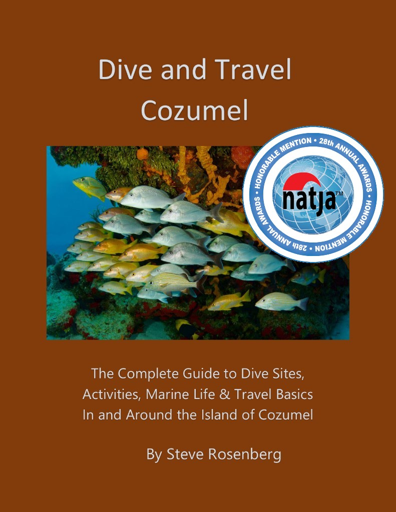 Dive and Travel Cozumel - Book Cover